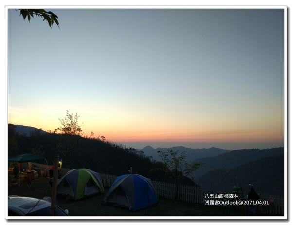 八五山甜柿森林-016.jpg