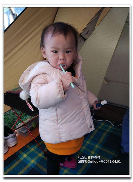八五山甜柿森林-028.jpg