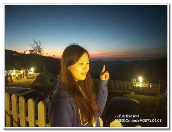 八五山甜柿森林-041.jpg