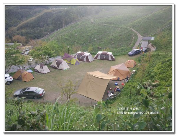 八五山甜柿森林-051.jpg
